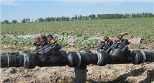 Xinjiang Cotton Field Project