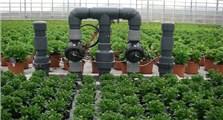 Flower Pots Greenhouse
