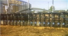 Artigiana Impianti Greenhouses